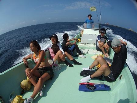 イルカの海へ!